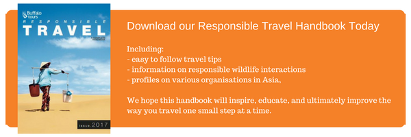 Download our Responsible Travel Handbook Today