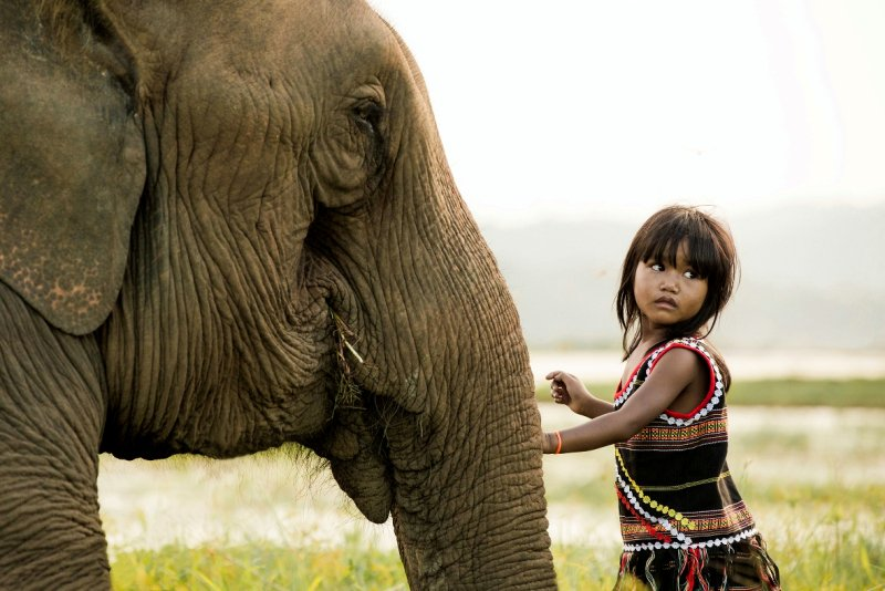 Malte Blas - How to Support Elephant Welfare as a Traveller