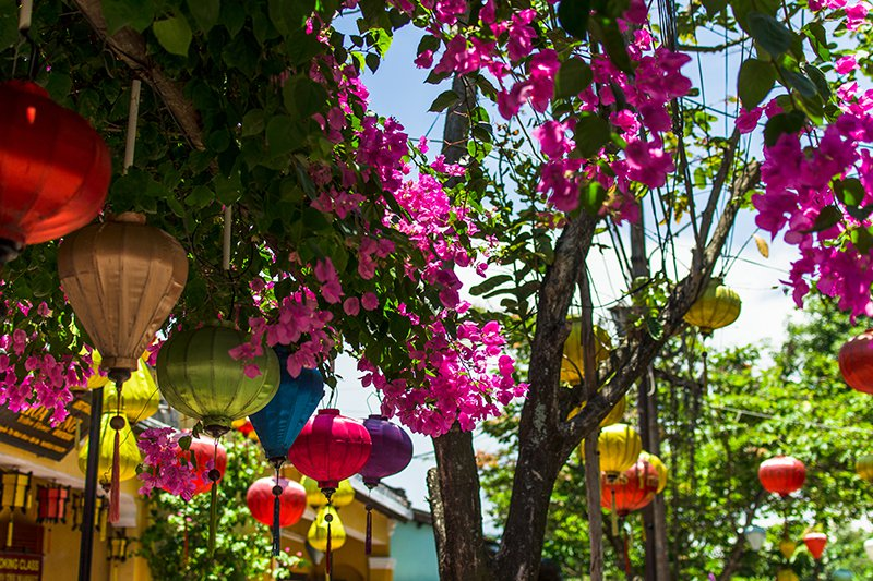 alte Blas - Luxury Travel Vietnam - Hoi An Lanterns